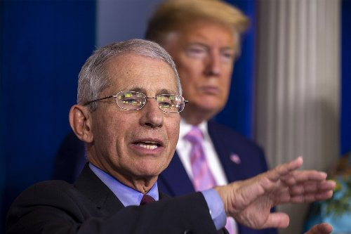 Fauci denied being 'muzzled' by Trump early in pandemic, emails show