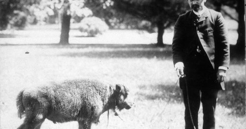 The Long History of Those Who Fought to Save the Animals