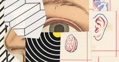 New Books on the Brain and What It Can and Can't Do