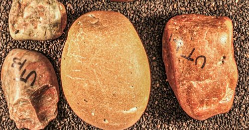 These Rocks Made a 1,000-Mile Trek. Did Dinosaurs Carry Them?