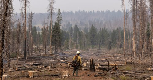 Photo From The Bootleg Fire: America's Largest Wildfire