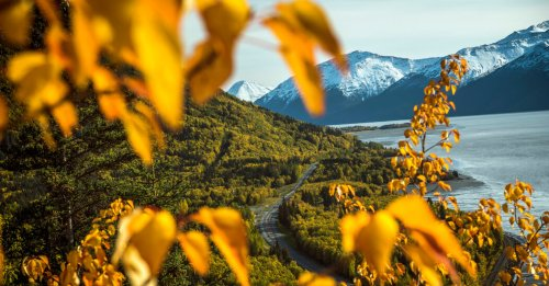 On a Fall Road Trip in Alaska, Prepare for the Unexpected