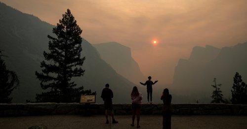 What I Saw in Yosemite Was Devastating