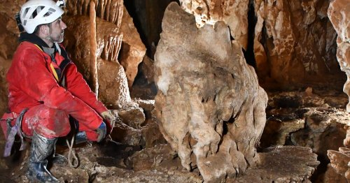 How Bats and Their Poop Erase Ancient Cave Art