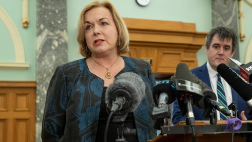 Covid 19 Delta outbreak: Tearful National Party leader Judith Collins 'heartbroken' for Auckland businesses - NZ Herald