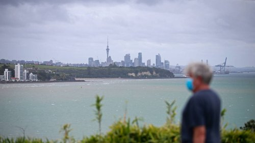 Covid 19 Delta outbreak: Experts agree it would be premature to lift restrictions in Auckland - NZ Herald