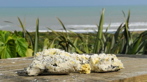 Whanganui's Castlecliff Beach blobs identified, but source is still a mystery - NZ Herald