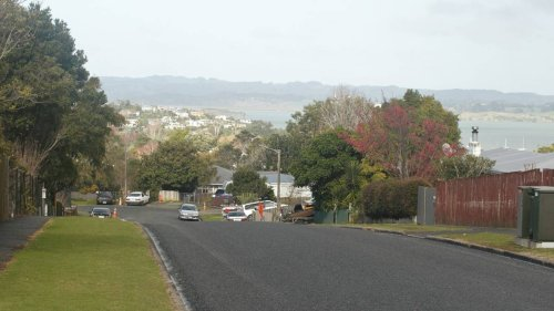 Pet dog saves Whangārei woman stabbed during attempted home invasion in Onerahi - NZ Herald