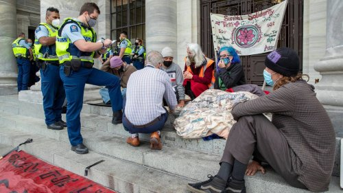 Activists reportedly glued to Parliament steps, dancing cows protesting across Wellington - NZ Herald