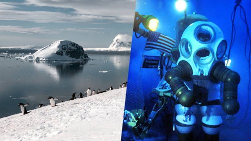 Open call for polar explorers: Antarctic Climate Expedition with Sylvia Earle - NZ Herald