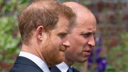 Daniela Elser: Prince Harry's tell-all memoir will boost Prince William's popularity - NZ Herald