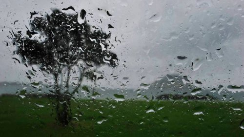 Weather: Heavy rain, gales for most of NZ this weekend - NZ Herald