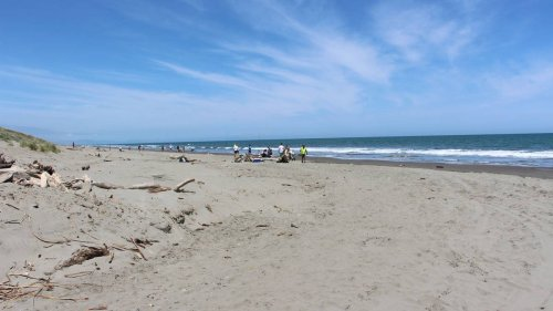 Body found at Foxton beach - NZ Herald