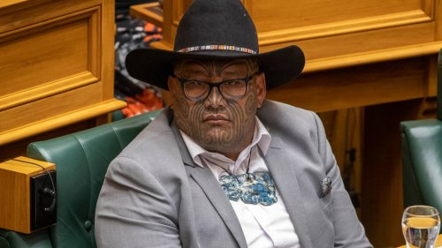 Rawiri Waititi slams 'grossly inappropriate' Trevor Mallard in Parliament stoush - NZ Herald