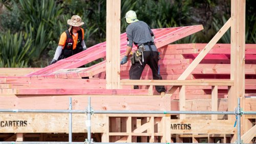 House building crisis: Government could limit timber exports to ensure local supply - NZ Herald