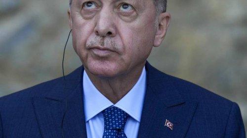Turkish President orders removal of 10 ambassadors, including NZ representative - NZ Herald