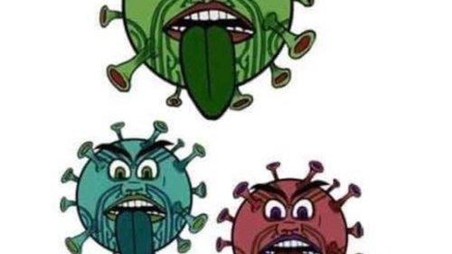 Covid 19 coronavirus: 'Appalling' Bay of Plenty DHB vaccine booklet withdrawn, chair apologises - NZ Herald
