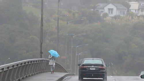 Weather: Snow warning for Desert Rd, rain for Whanganui - NZ Herald