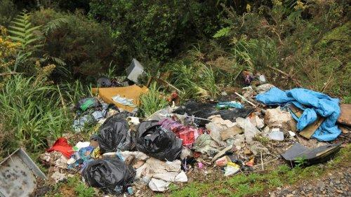 Northland's shameful secret: Pristine bush turned into putrid, polluting rubbish tip - NZ Herald