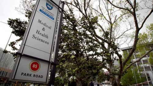 Auckland University professor resigns over letter claiming Māori knowledge isn't science - NZ Herald