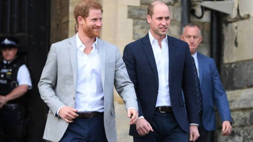 Royal expert reveals meaning behind Prince William's 'curt' birthday message to Prince Harry - NZ Herald