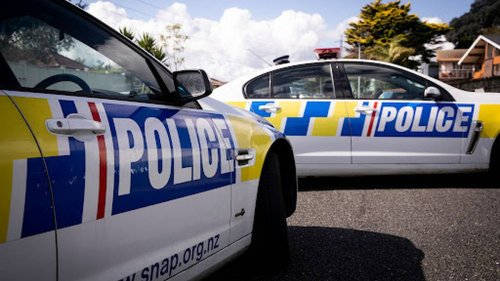 Police spike young boy racer's car after 'anti-social' gathering in Wellington - NZ Herald