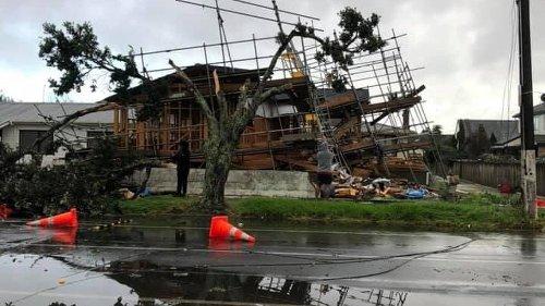 'Rapid storm' in Auckland: Papatoetoe tornado tears down trees, trampoline blown away - NZ Herald