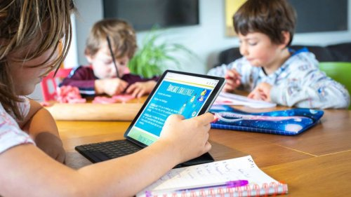 Covid-19 Delta outbreak: How to survive another term of homeschooling during lockdown - NZ Herald
