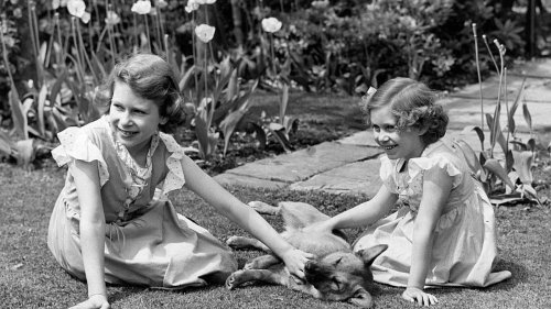 The forgotten story of the Queen's swimming friends - and what they know about her - NZ Herald