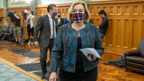 Covid 19 Delta outbreak: Judith Collins accuses Government of creating two class system - NZ Herald