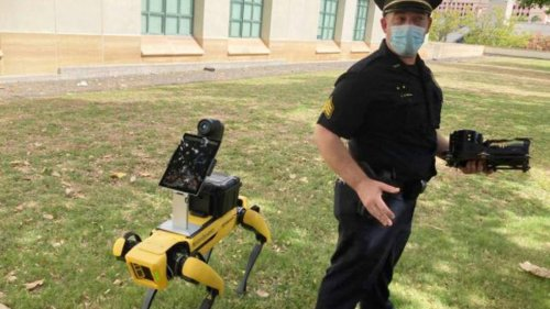 Robotic police dogs: In Hawaii police use Spot from Boston Dynamics - NZ Herald