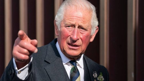 Move over Harry and Megan! Prince Charles' big TV deal revealed - NZ Herald