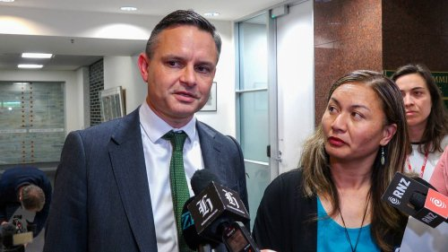 Green Party says it cannot repay $53,000 donated by animal abuser - NZ Herald