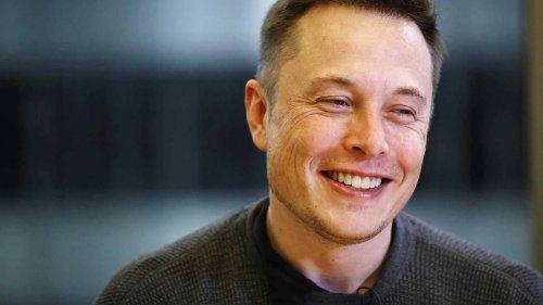Tesla CEO Elon Musk sparks Shiba Inu cryptocurrency surge with single tweet - NZ Herald