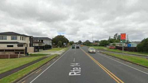 Driver critical after crashing into tree in South Auckland - NZ Herald