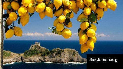«Ich will nicht, dass Amalfi ein Disneyland wird» – doch der Zitronenbauer an der berühmten italienischen Küste ist auf Touristen angewiesen