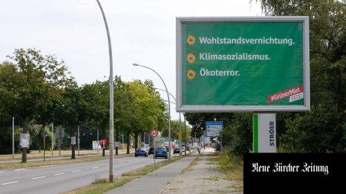 Plakate gegen Grüne: «Wir wenden uns gegen Positionen, nicht Personen»