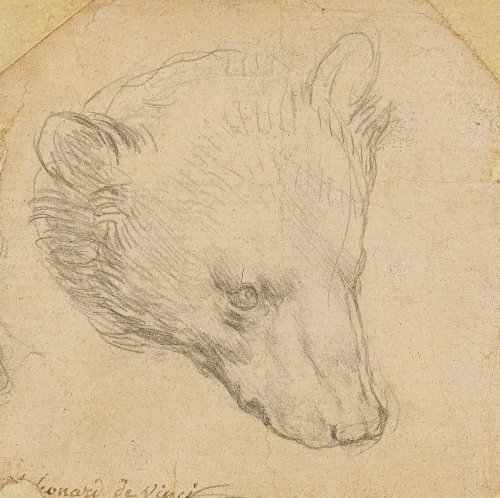 Leonardo da Vinci's 'Head of a Bear' Could Break an Auction Record for the Artist