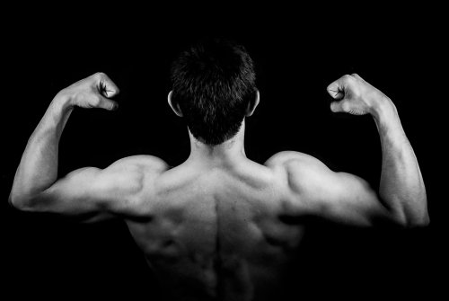 The 7 Best Supplements for Building Muscle