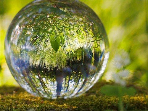 Klimanotstand: Regionalregierungen schließen sich vor der COP26 zu gemeinsamem Handeln zusammen