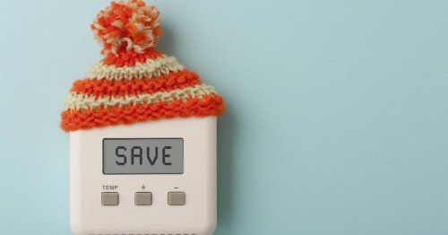 4 Budget-Friendly Tech Devices to Help Cut Your Energy Costs