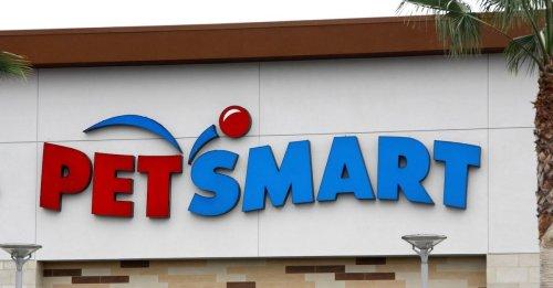 27 PetSmart Money-Saving Tips for Thrifty Budgets