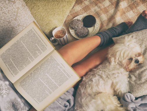 7 Relatable Reads to Distract You from Your Own Anxieties