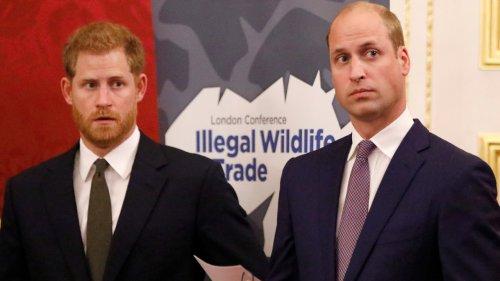 Neue Enthüllungen über die Royals-Brüder: Was ist der wahre Grund ihrer Entzweiung?