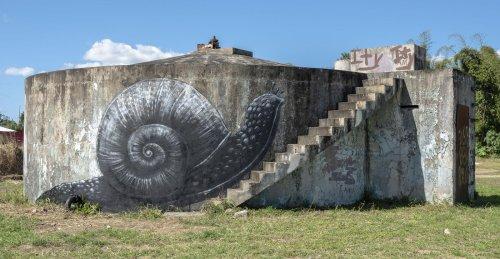 Monumentales murales que celebran la biodiversidad animal por ROA | Street Art