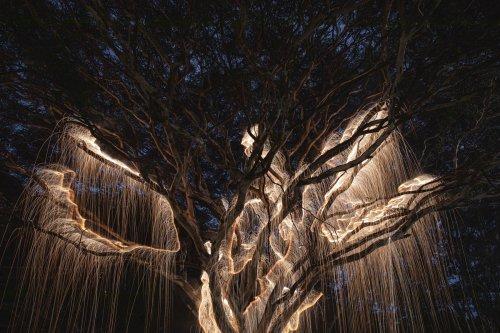Rayos de luz en la fotografía de larga exposición de Vitor Schietti   Fotografía