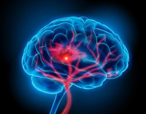 Neuropsicologia cover image