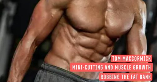The Misunderstood Art of Mini-Cutting for More Muscle