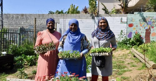 How these Cape Town-based organizations are fighting food waste and food insecurity