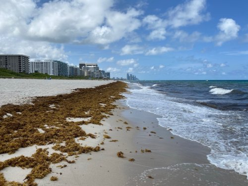 Florida Resort Revenue Up 36.1% Compared To 2019 | One Mile at a Time